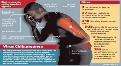 Signos y síntomas de chikungunya